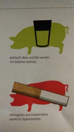 schwein-2